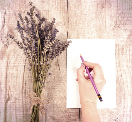 Top view of bundle of dried lavender flowers and womans hand  holding pencil on a shit of paper with copy space over wood table  Imagens