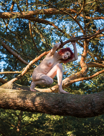 Beautiful young naked woman posing on a tree. Sexy redhead enjoying summer hot day Banque d'images