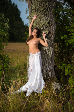 Young seminude woman wrapped in white linen posing near the tree. Naked woman enjoying nature and summer time. Relaxing on summer evening. Sexy naked brunette Stock Photo