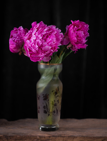 Artistic still life with pink peonies in vase on a dark background