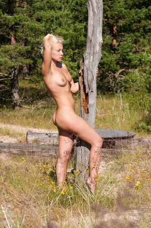 Beautiful young naked woman posing near dry old tree outdoors. Sexy blonde Archivio Fotografico - 133376905