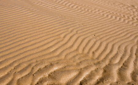 Ripples in wet sand background texture. Beach sand background. Dunes on the sea shore