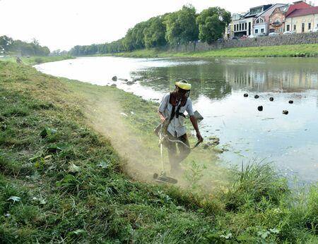Der Gärtner mäht das Gras mit einem Rasenmäher Standard-Bild