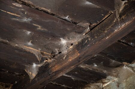 Spider web on the wooden ceiling of an old house