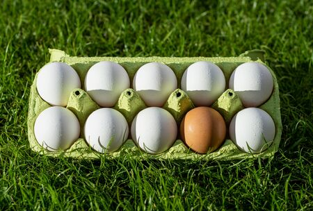 Fresh chicken eggs in a paper box on a background of green grass. Nine white eggs and one brown Foto de archivo