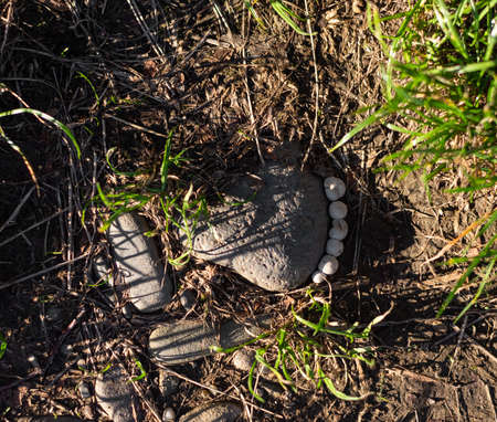 Foot-shaped stone and mushrooms outdoors in sunny day Zdjęcie Seryjne