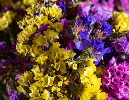 Beautiful bouquet of limonium. Flower natural background 免版税图像