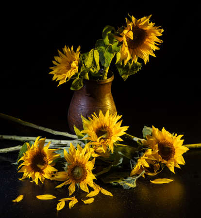 Beautiful bouquet of sunflowers in vase on a black table over black background. Autumn still life