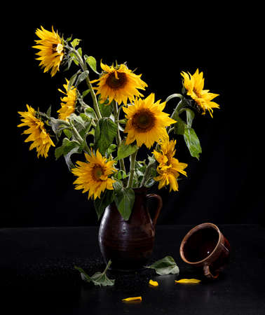 Beautiful bouquet of sunflowers in vase and tea cup on a black table over black background. Autumn still life