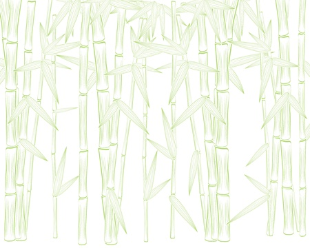 background as summer green bamboo silhouette