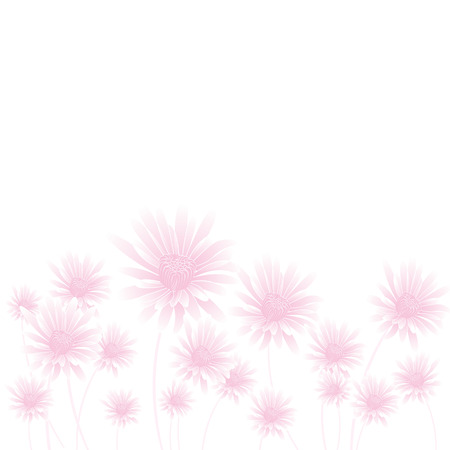 calendula: abstract pink flowers on light background