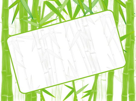 summer green bamboo frame with silhouette background