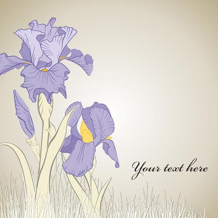 iris flower: spring iris flower on brown background Illustration