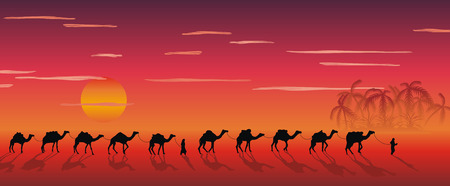 nigth: caravan of camels in the desert near the oasis