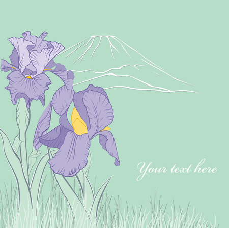 spring iris flower with mountain on green background