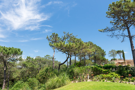 vale: WOLF VALLEY, ALGARVE, PORTUGAL, MAY 2, 2014: Houses and buildings in Wolf Valley (Vale do Lobo), Algarve, Portugal