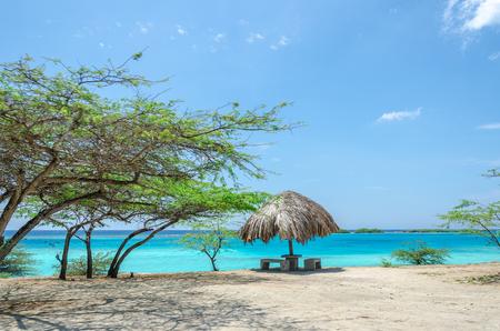 aruba: Amazing view of the Mangel Halto beach in Aruba, a caribbean paradise Island Stock Photo