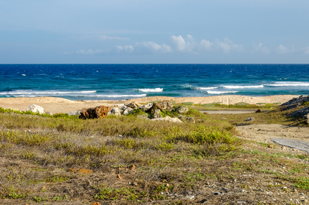 Dry and arid desert landscape with sea as background in Aruba Island at the Caribbean