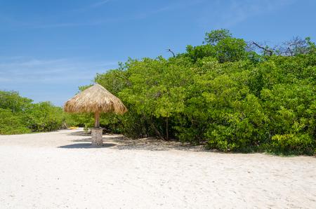 Amazing view of the Mangel Halto beach in Aruba, a caribbean paradise Island Stock Photo