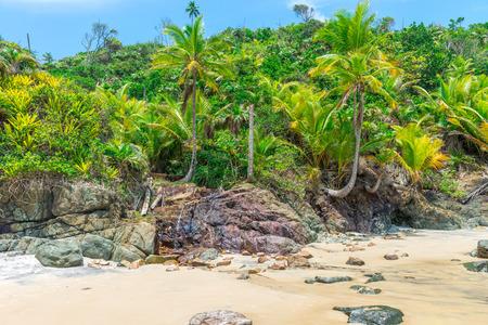 Summer holiday daylight beach scene tropical paradise vacation on coast surfboards on sand