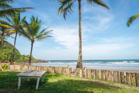 Itacare, Brazil - December 7, 2016: palm tree trunk wood fence in rainforest beach in Brazil