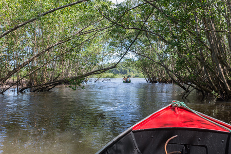Itacare, Brazil - December 9, 2016: Boat ride getting out of a mangrove green water canal