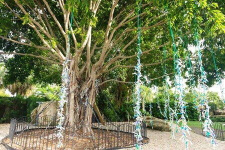 Saint Petersburg, USA - jun 16, 2018: Gardens at the Salvador Dali museum in St Petersburg