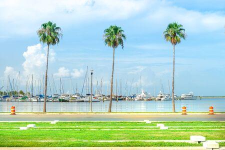 Saint Petersburg, USA - jun 16, 2018: Marina with many sailboats anchored by the sea