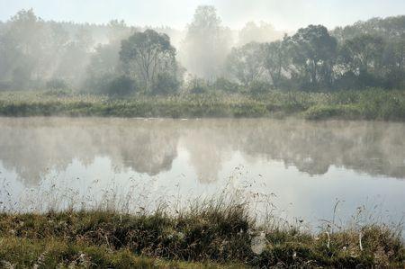 potherb: Niebla de la ma�ana en el r�o Vilija, Bielorrusia.