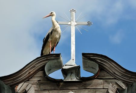 red cross red bird: The stork costs near to a cross on a roof of a rural church Stock Photo