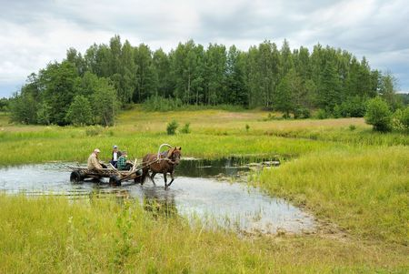 Landscape, a stream in the meadow and a cart with people riding on the hay-making. Stock Photo