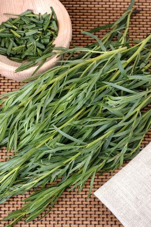 A bunch tarragon, used in cooking and medicine plants. Stock Photo
