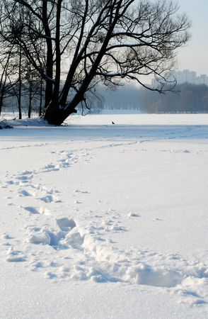 Ice-covered lake after a snowfall in February. photo