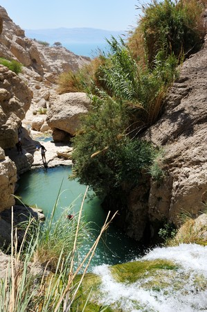Rocks, streams and waterfalls, water and life in the arid desert - Ein Gedi nature reserve off the coast of the Dead Sea.