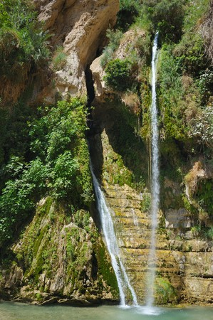 ein: Rocks, streams and waterfalls, water and life in the arid desert - Ein Gedi nature reserve off the coast of the Dead Sea.