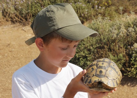 A boy examines a turtle, found in grass photo