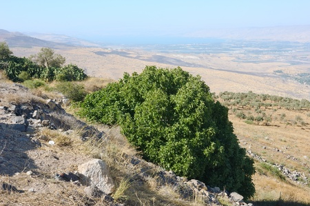 South shore of Lake Kinneret, the beginning of the Jordan River and the Jordan Valley. photo