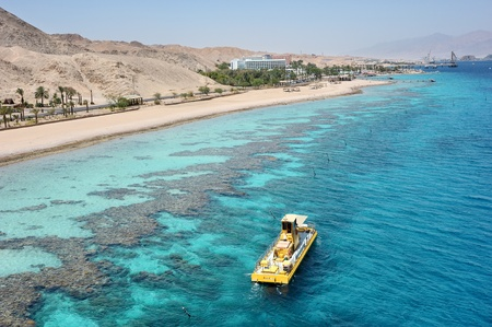 Coral reef in the Gulf of Eilat Red Sea