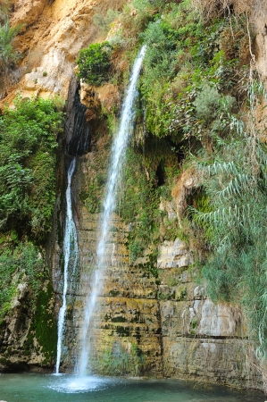 ein: Rocks, streams and waterfalls, water and life in the arid desert - Ein Gedi nature reserve off the coast of the Dead Sea