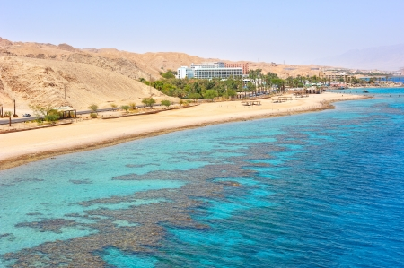 Coral reef in the Gulf of Eilat Red Sea photo