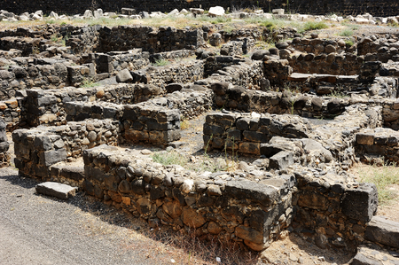 Wall, street and houses - ruins of the Roman-period town Capernaum.