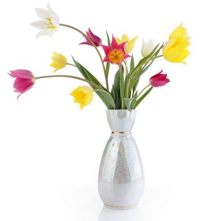 flower bunch: Field tulips  Stock Photo