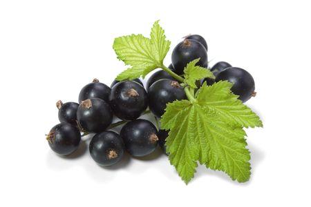 currants: Black Currant