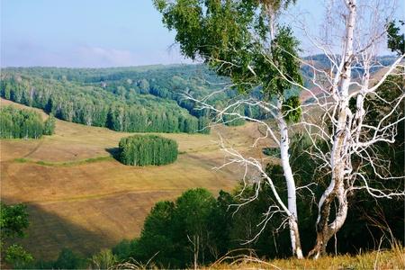 Landscape Stock Photo - 10255165