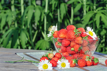 Fresh strawberries on table in the garden Stock Photo