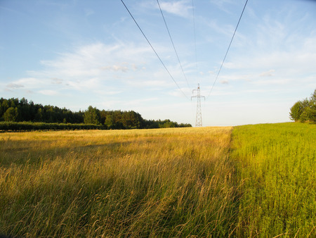 routed: The photo shows high-voltage cables routed over a colorful meadow, on a background of blue sky
