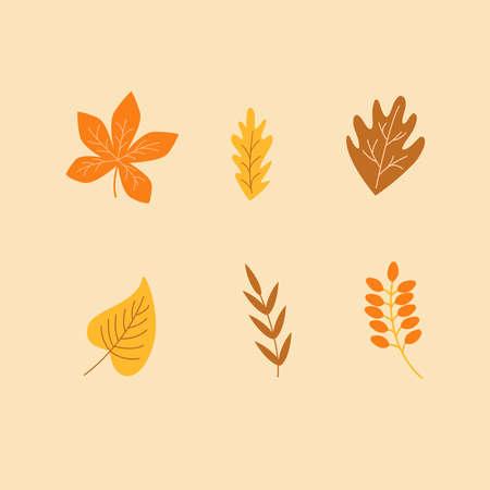autumn leaves set. leaf collection
