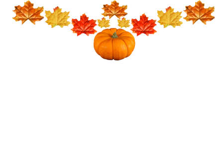 Pumpkin and leave border isolated on white photo