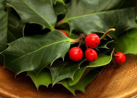 red holly berries  and leaves