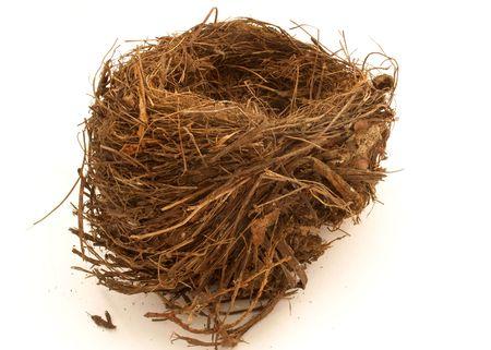 Birds nest isolated on white Stock Photo